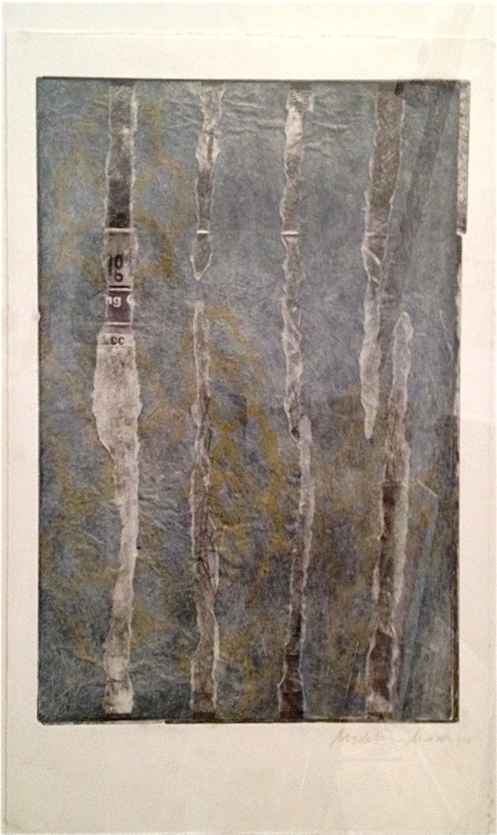 """""""Detritus,"""" 2013 Color etching with chine-colle', 12"""" x 20"""" in black frame by: Madeline Marak"""