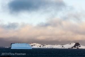 """Tina Freeman- """"Antarctica Series"""""""
