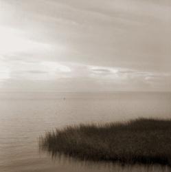 """Sandra Russell Clark - """"March Grass Island"""""""